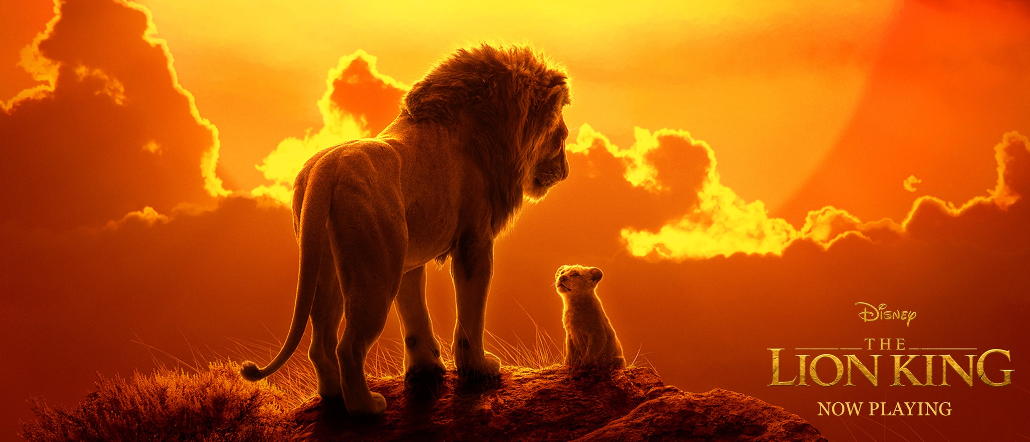 Malgré une baisse par rapport à sa première semaine, Le Roi Lion reste le film le plus regardé dans les cinémas américains ce week-end
