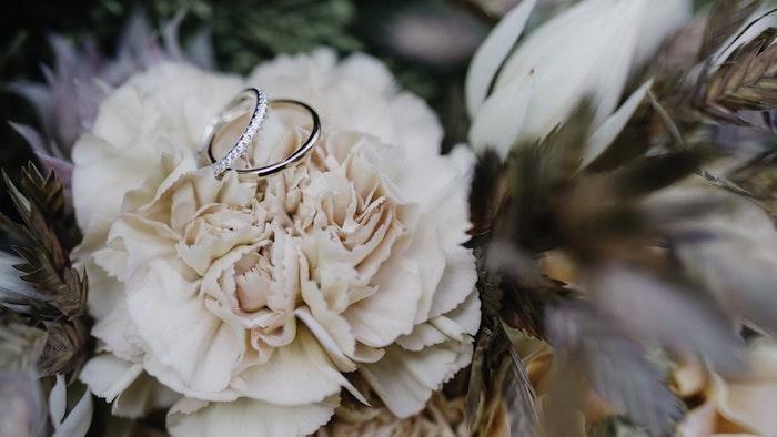 Belle photo de fleur pivoine et deux alliances de mariage en or blanc, alliance mariage femme diamant