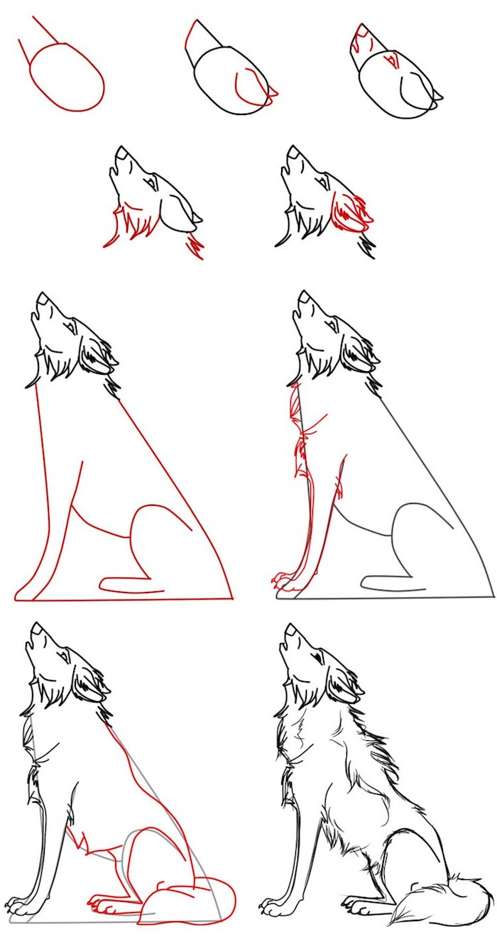 idee de dessin facile a reproduire soi meme, corps et tete de loup a dessiner soi meme, symbole de la force