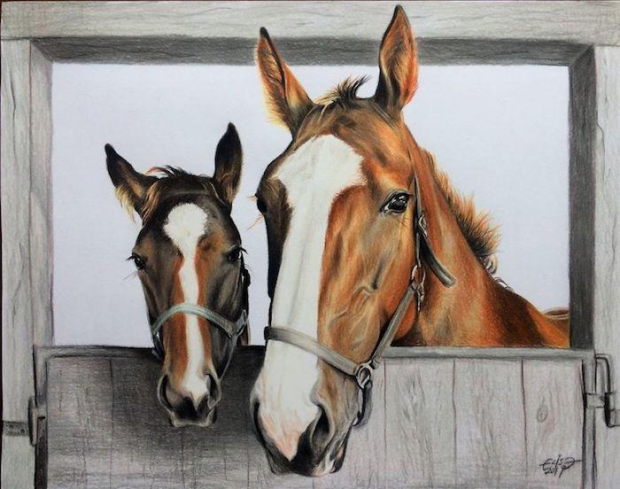 Chevaux adorables, dessin à couleur, comment bien dessiner, inspiration dessin 3d photo-réaliste, cheval et son petit
