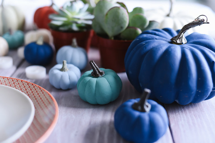 idees de citrouilles et potirons colorés de couleurs pastel teintes bleu pastel pour decorer la table avec des plantes succulentes deco