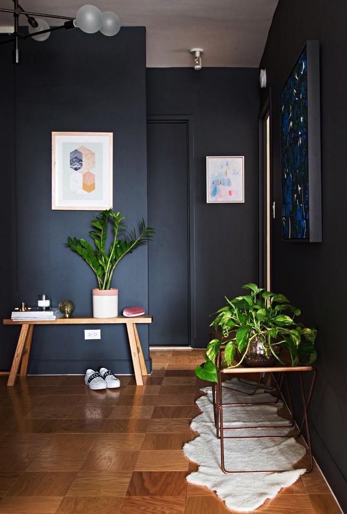idée peinture couloir et entrée, aménagement d'une entrée moderne aux murs sombres avec des accessoires déco en bois et métal