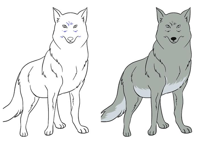 dessin original a faire soi meme, animal loup noir et blanc coloré de gris, apprendre a dessiner facilement