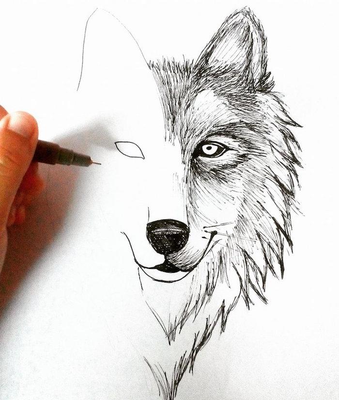 tete de loup dessin, comment faire un dessin facile a reproduire au stylo à pointe fine sur feuille vierge