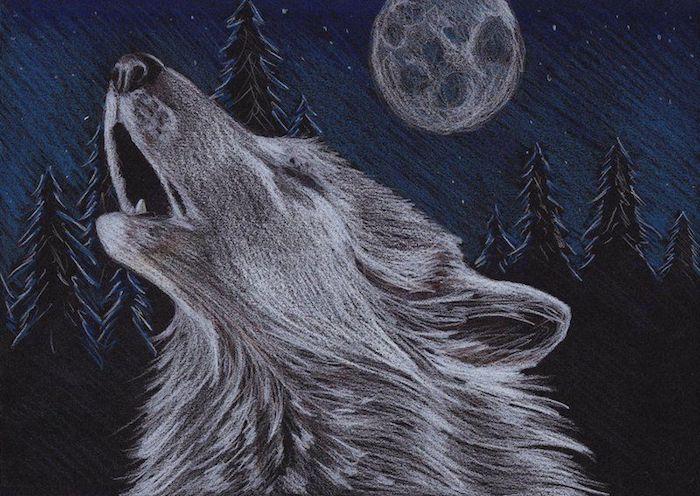 modele dessin au fusain, paysage nocturne macabre de loup hurlant au clair de la lune dans une forêt à silhouettes d arbres noires