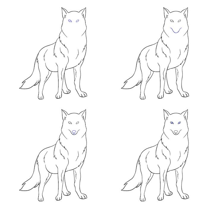 dessiner les détails de la face d un loup, dessin yeux et gueule de loup, dessin de loup facile