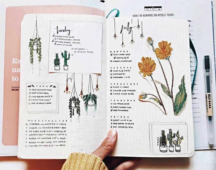 planning bullet journal semaine avec aperçu des tâches à accomplir décoré d'illustrations naturalistes