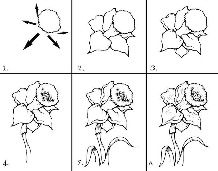Comment dessiner une fleur, dessin fleur étape par étape, six pas à suivre pour dessiner une belle fleur