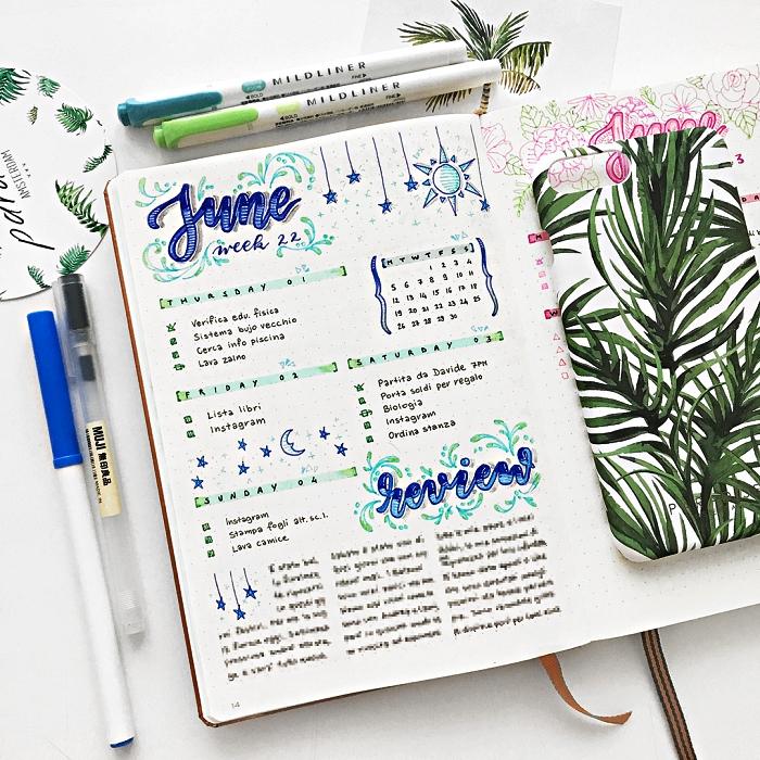 mise en page du calendrier hebdomadaire, une double page du calendrier mensuel pour juin décorée de petits dessins végétaux