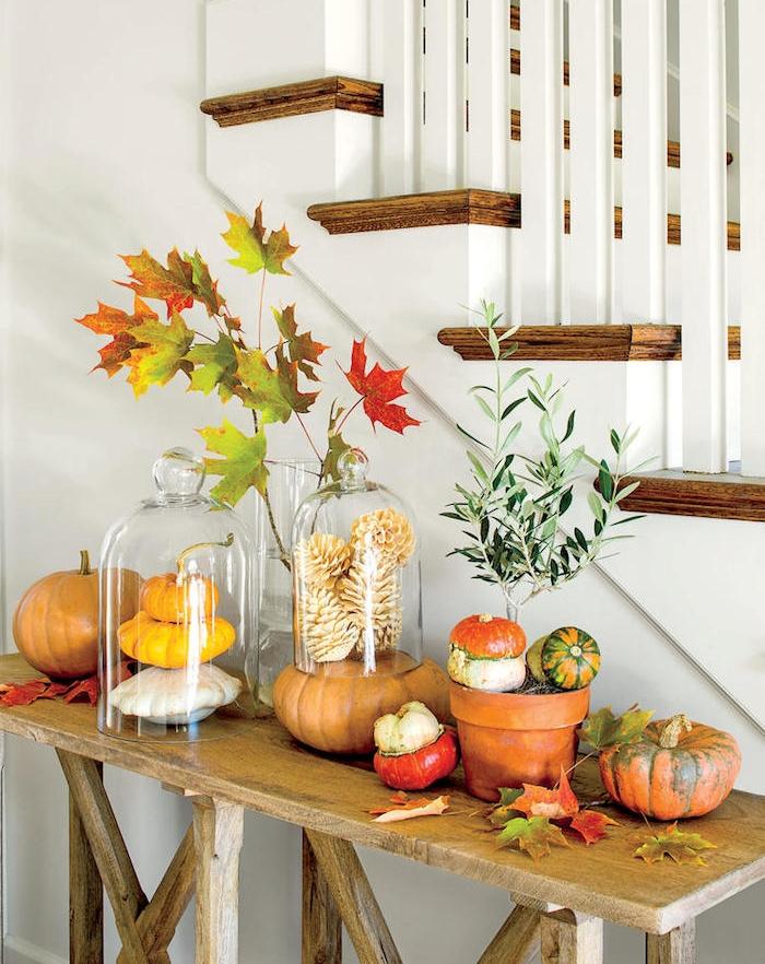 cloches en verre avec deco automne en potirons, pommes de pin dorées, feuilles d automne sur une table bois brut