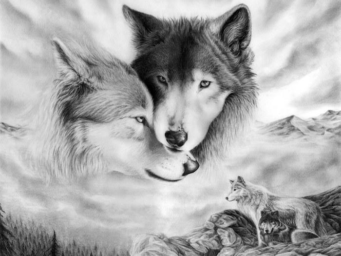 symbole de la louyauté et de la fidélité, dessin de loup et louve en noir et blanc, couple noir et blanc