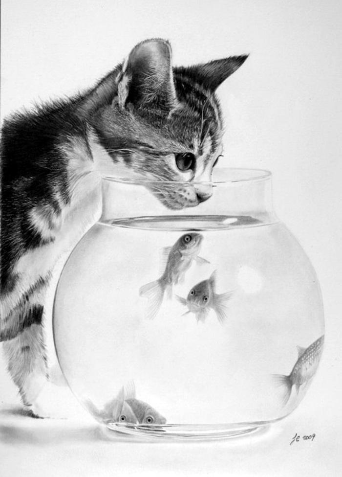 Dessiner un chat réaliste, dessin chat et bocal avec poisson doré, inspiration dessin animal, dessin réaliste art photoréalisme