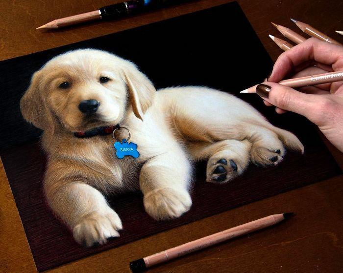 Comment dessiner un chien mignon, idée dessin sur papier noir avec crayons claires, dessin réaliste à faire, dessin photoréalisme