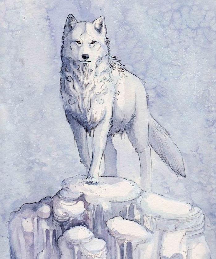 portrait de loup polaire en blanc sur un rocher glacier et fond bleu et blanc, dessin facile a dessiner