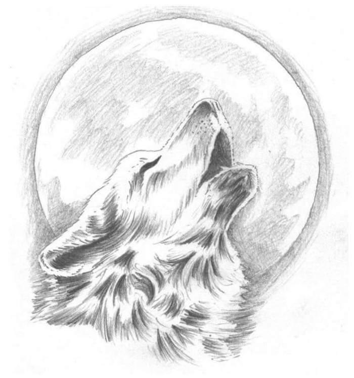 dessin graphique simple avec loup qui hurle au clair de lune, comment dessiner au crayon facilement