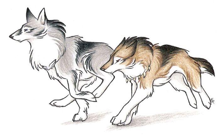 exemple de dessin graphique avec de la couleur grise et marron de loup et louve couple, symbole de la loyauté