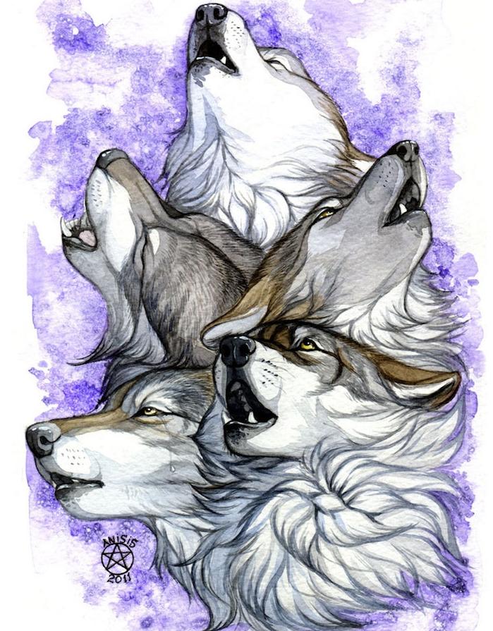 dessin de plusieurs tetes de loups qui hurlent sur un fond aquarelle en violet