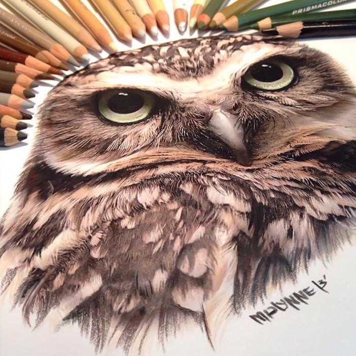 Hibou dessin coloré, dessin au crayon, comment bien dessiner en comprenant les contrastes
