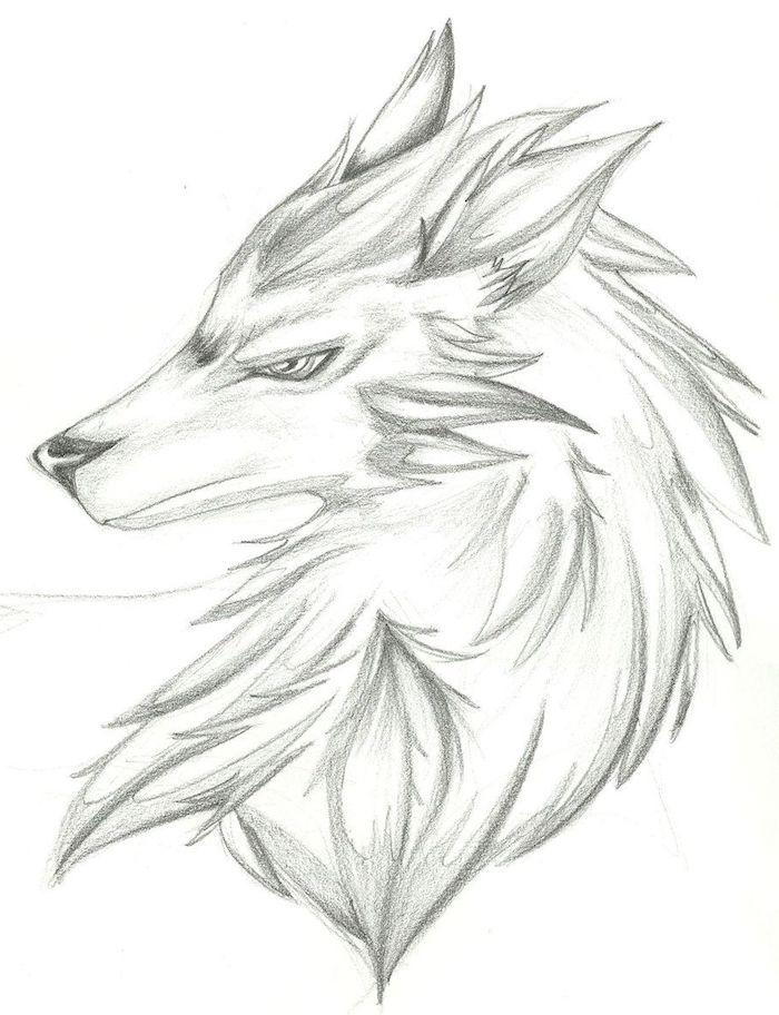 dessiner un loup d une maniere simpliste, dessin original de tete d animal simple avec grosse crinière