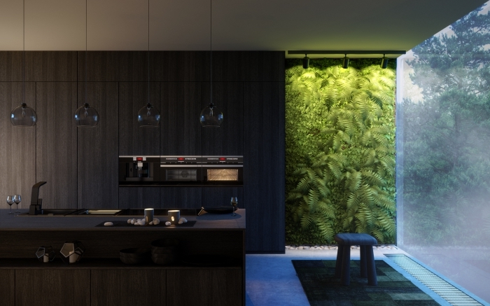 décoration cuisine moderne avec plan de travail noir, design intérieur contemporain dans une cuisine foncée
