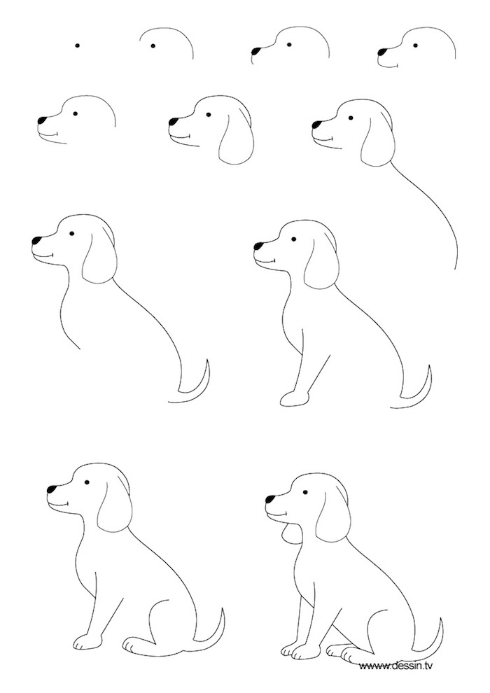 Comment dessiner un chien mignon, modèle de dessin, idée image dessin technique perspective