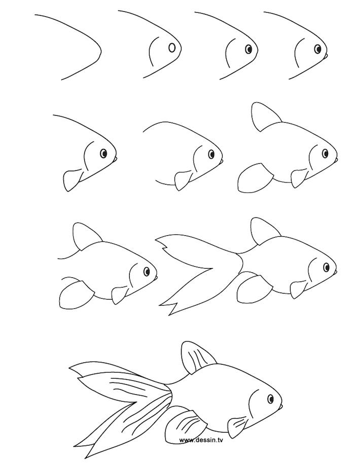 Dessin pour enfant ou pour débutant, comment dessiner une poisson, étape par étape, images et video apprendre a dessiner, cool idée de dessin