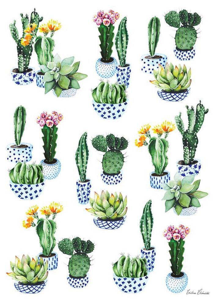Cactus dans pot adorable blanc et bleu, cool idée comment faire un dessin à l'aquarelle de cactus, dessin facile à reproduire