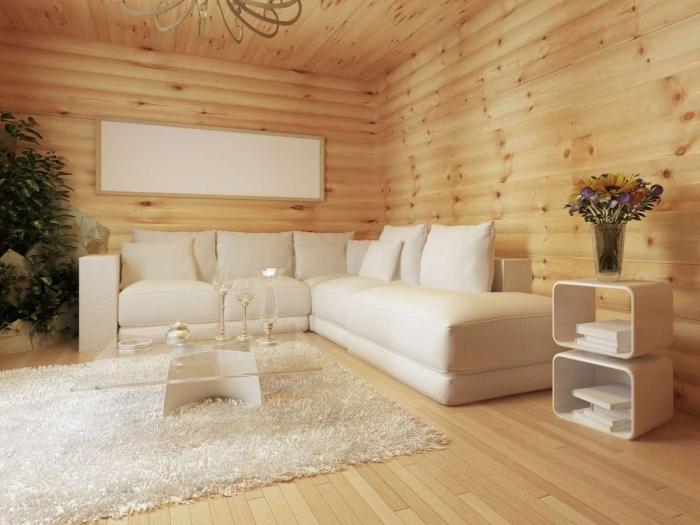 idée comment habiller un mur, modèle de salon rustique avec ambiance cozy aux meubles et accessoires en blanc