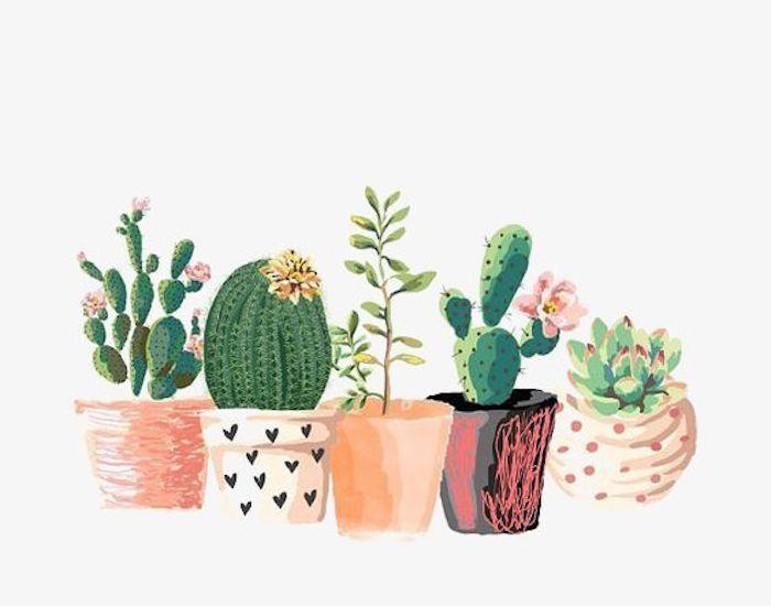 Plantes vertes dessin hippie chic, dessins à reproduire, idée comment dessiner des dessin cactus