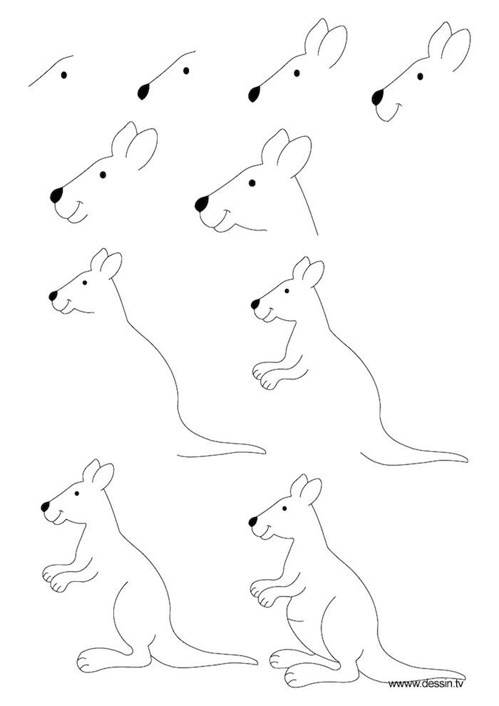 Apprendre à dessiner un kangourou, dessin simple à reproduire, comment dessiner des dessin