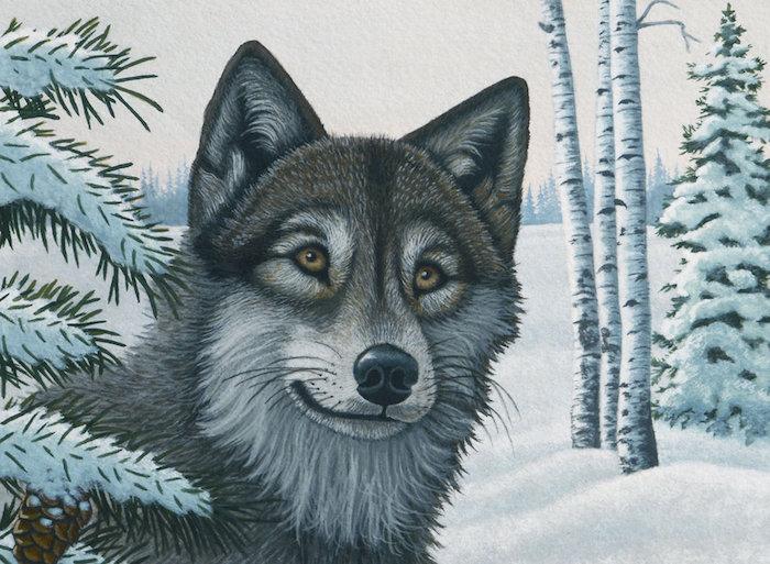 portrait de loup polaire sur fond enneigé d'un foret en hiver, comment dessiner une tete de loup