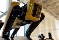 Boston Dynamics lâche son robot-chien Spot