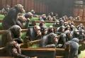 Le tableau «Devolved Parliament» de Banksy bientôt mis aux enchères