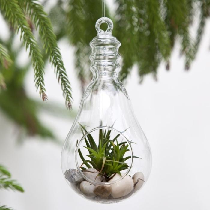 faire une suspension avec plantes, modèle de récipient ampoule en verre rempli de pierres avec plante verte