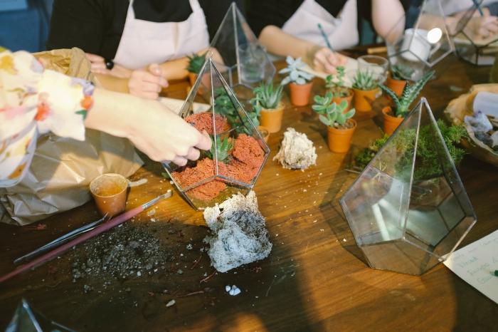 comment faire un terrarium, avec quoi remplir un terrarium ouvert, modèle de terrarium en verre avec petites plantes