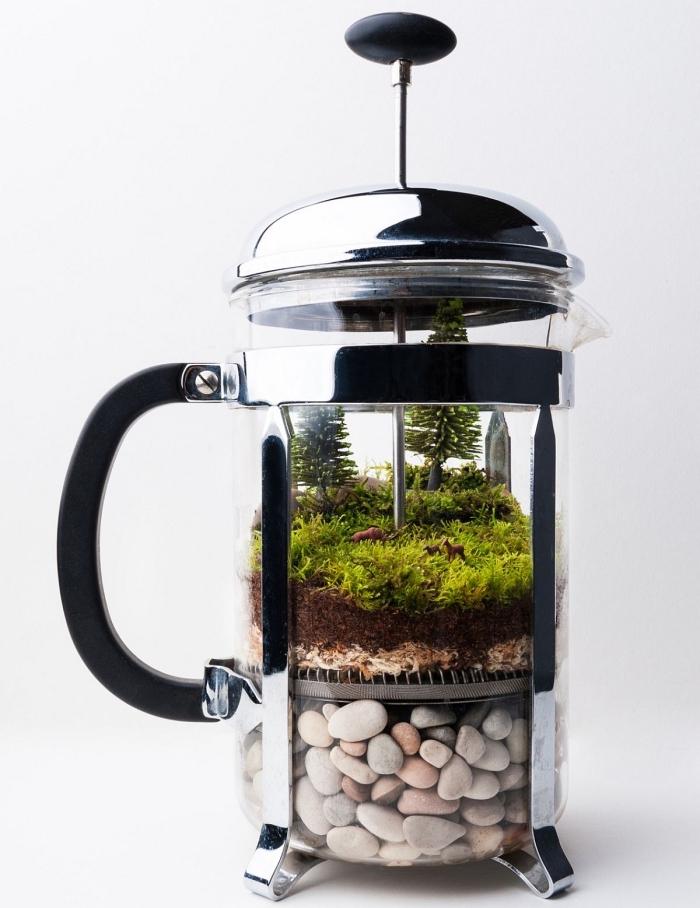terrarium plante bocal facile à réaliser, exemple de terrarium dans cafetière, quelles plantes pour terrarium fermé