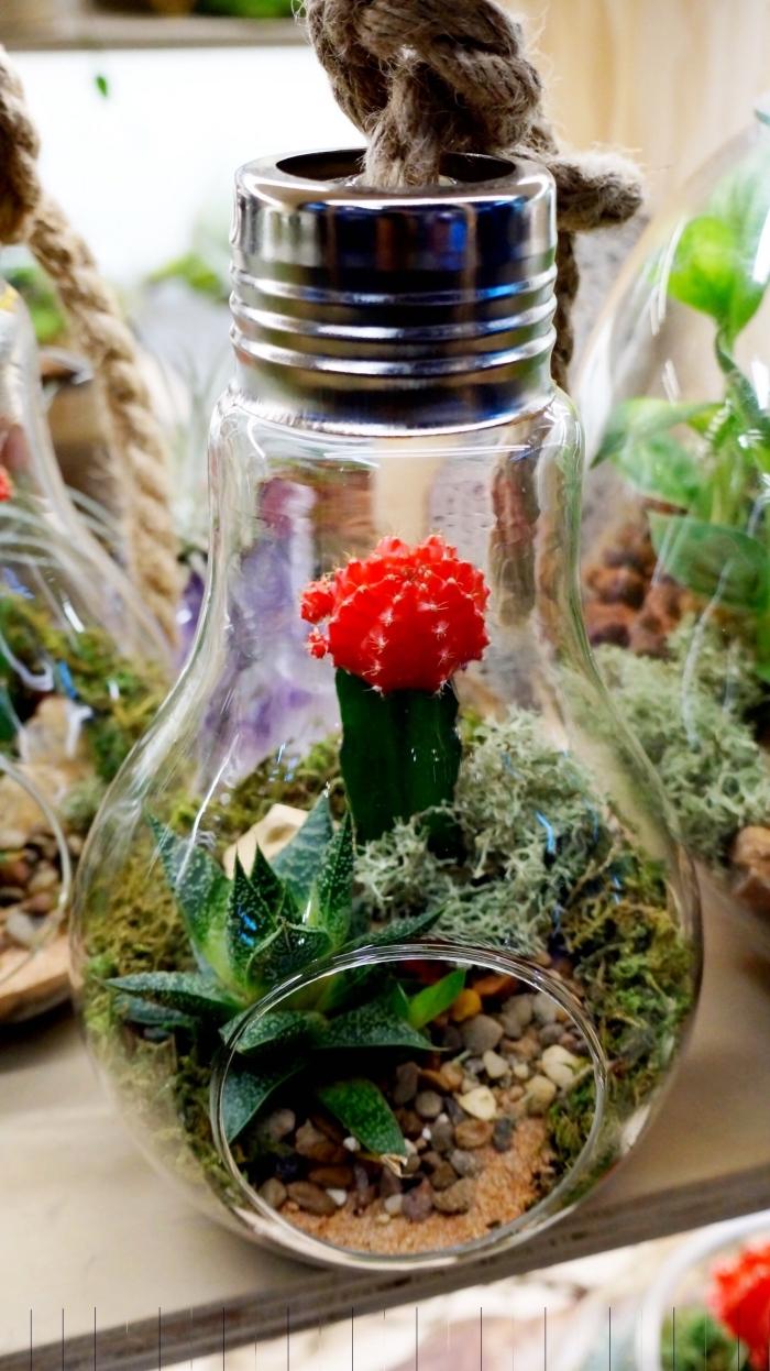 diy terrarium plante facile à faire, modèle d'ampoule électrique remplie de mini plantes et cailloux, terrarium suspendu diy