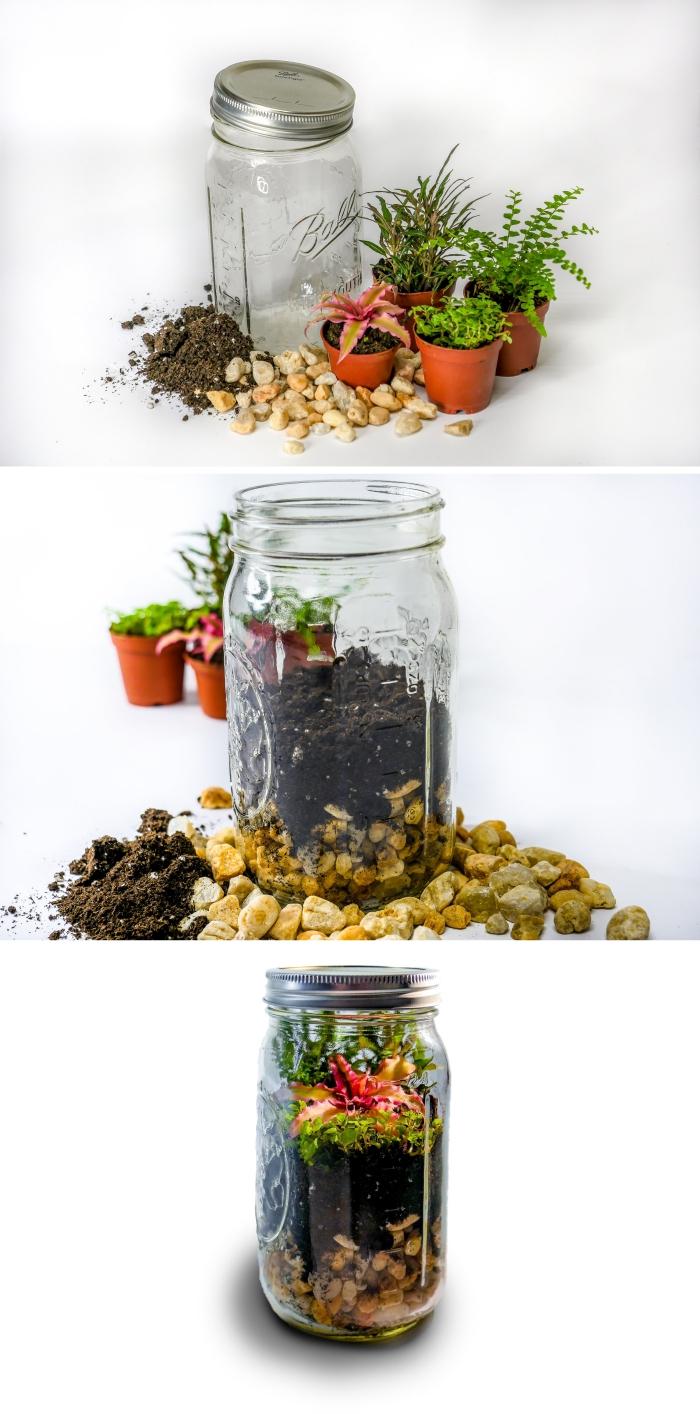 avec quoi remplir un terrarium plante bocal, idée quel type de plante en bocal fermé, remplissage terrarium plantes