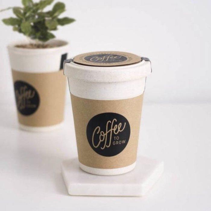 Café à planter dans une tasse qui ressemble à gobelet de café à emprunter, idée de cadeau pour couple, simple idée pour cadeau