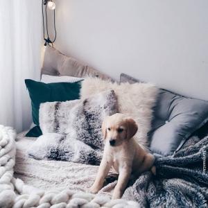 10 astuces déco pour aménager une chambre cosy sans se ruiner
