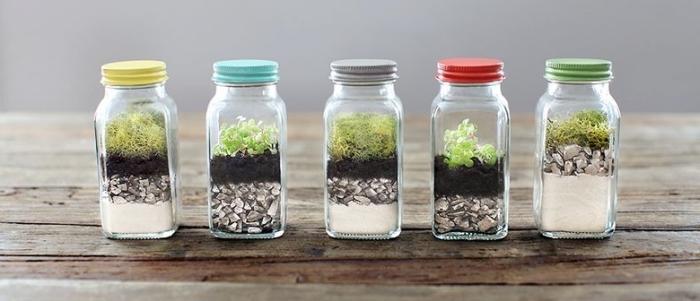 bricolage avec bouteilles en verre, idée recyclage petites bouteilles avec couvercle, diy terrarium fermé dans bouteille