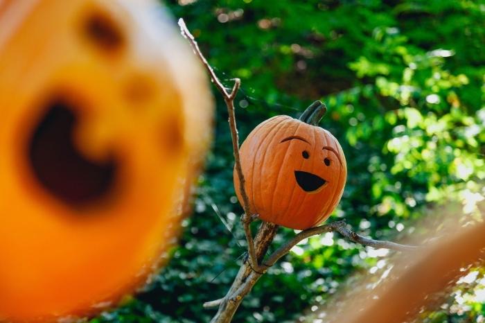 diy déco à faire soi même pour halloween, modèle de citrouille sculptée pour halloween, déco jardin avec citrouille