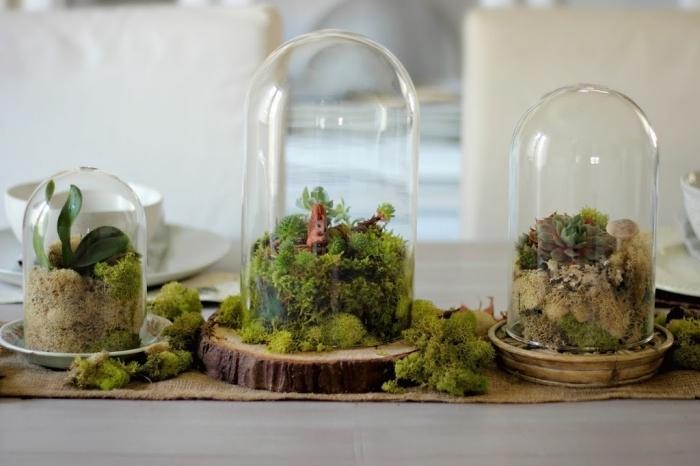 idée plante en bocal fermé, modèles de terrariums en bocal verre, décoration de table avec objets fait main faciles