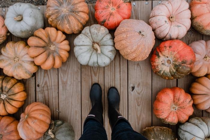 paysage d automne pour wallpaper ordinateur, photo véranda en bois avec citrouilles différentes sortes et bottines fille
