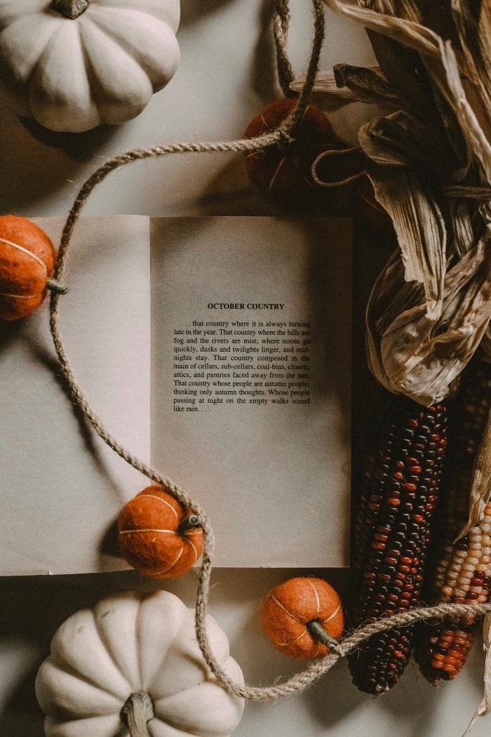 fond d écran automne, déco cocooning avec diy guirlandes à petites citrouilles et livre, idée wallpaper portable