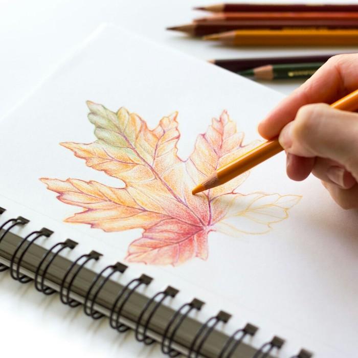 Feuille coloré dessin, idée comment faire un dessin feuille d'automne, choisir les couleurs de l'automne pour son dessin à crayon