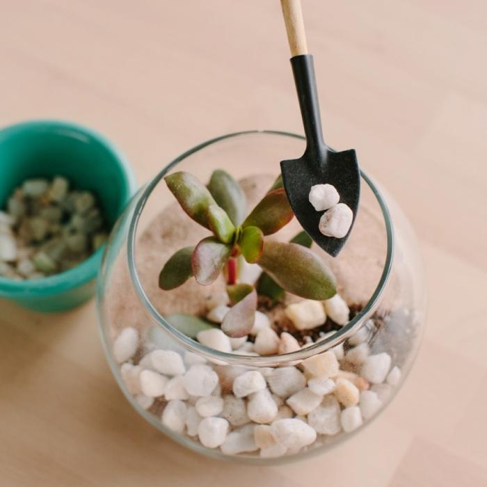 comment fabriquer un terrarium facile, modèle de terrarium dans un aquarium verre rond rempli de sable et cailloux