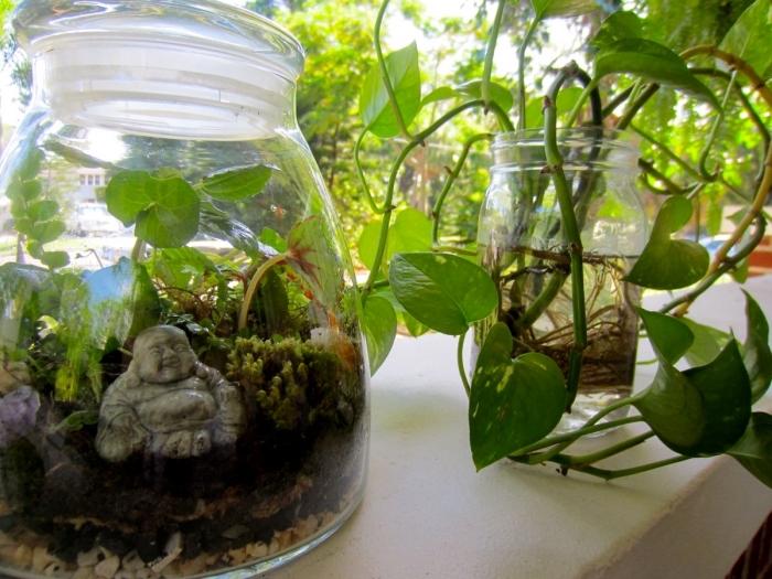 réaliser un mini jardin zen dans un bocal en verre, terrarium bocal DIY, idée terrarium plante bocal avec figurine zen