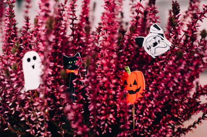 diy décoration pour la fête de halloween avec fleurs et signets symboles de Halloween, idée fond d'ecran halloween pour PC