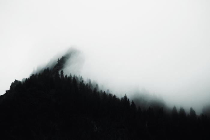 paysage d automne sombre pour wallpaper ordinateur, photo blanc et noir de nature, paysage sommet montagne et brouillard